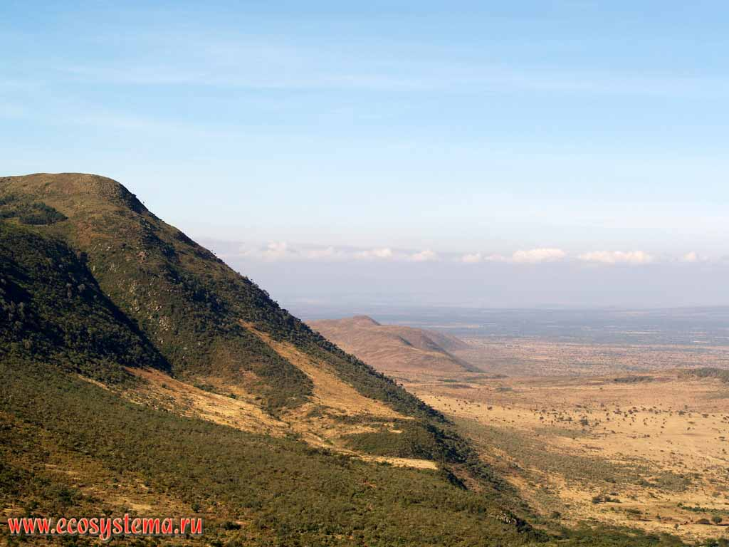 East African plateau. Where is the East African Plateau