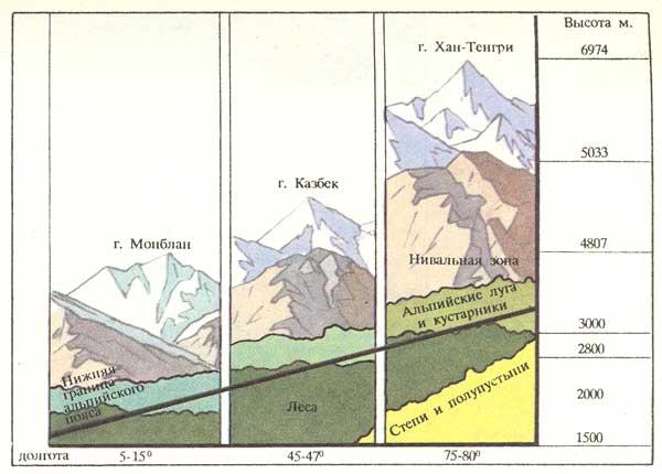 Положение альпийского пояса в
