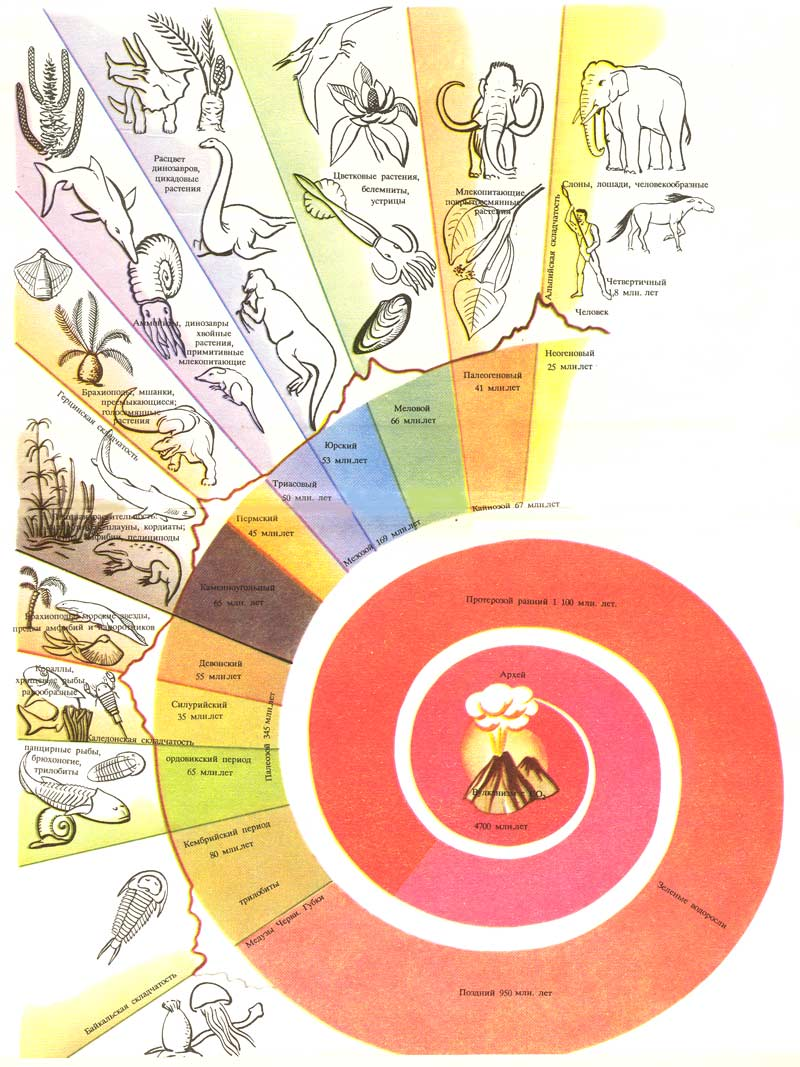 Геохронологическая шкала. Схема истории Земли